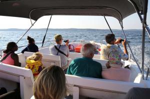 Activités autour du domaine - Sortie en mer
