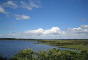 Réserve naturelle étang de cousseau
